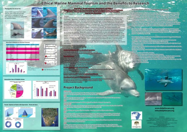 DolphinCare poster.jpg